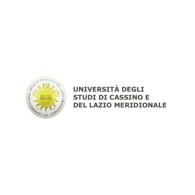 DICEM – UNIVERSITA' DEGLI STUDI DI CASSINO E DEL LAZIO MERIDIONALE
