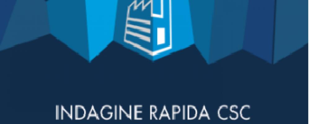 CONFINDUSTRIA Indagine Rapida CSC – Luglio  2021